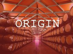 Beso de Vino Winery. Grandes Vinos y Viñedos.