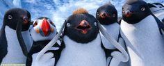 Happy Feet 2. Dec. 23rd 2014. 17h20 (16:20 GMT). TF1