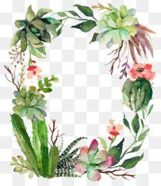 Cactus Png, Cactus Vector, Cactus Flower, Cactus Plants, Cactus Painting, Watercolor Cactus, Cactus Silhouette, Cactus Backgrounds, Victorian Frame