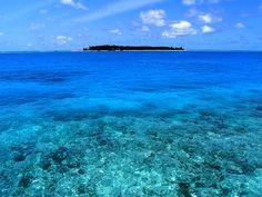 MALDIVE. Velavaru Island (l'isola delle tartarughe)