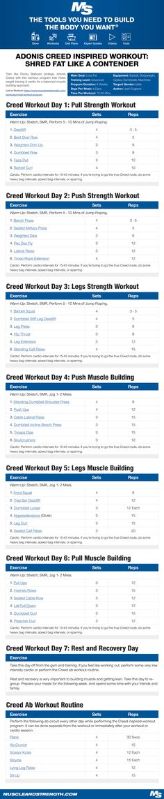 Shred fat like a champion with this Adonis Creed inspired workout! The principles behind this program and the actual training will be centered more so on the fictional character Adonis Creed, as opposed to Michael B Jordan. #Gym #Workout #Movie #Creed #RockyBalboa #Adonis #Boxing #FatLoss