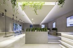 Ivy Restaurant and Lounge Bar -  Reggio Emilia / Italy / 2015. Project authors: NAT Office