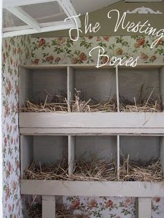 Karin's wallpapered nesting boxes... oh yes! My pretty chickies are soooo getting rosy wallaper!