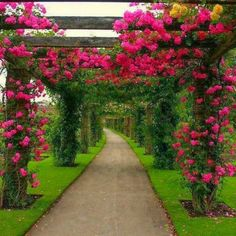 83 beautiful amazing gardens
