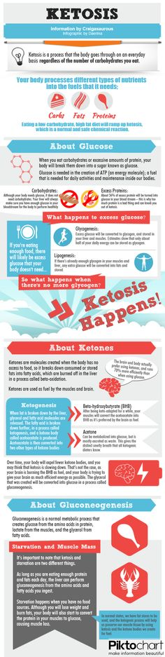 keto diet inforgraphic. Really good introduction to Ketogenic diet