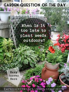 When is it too late to plant seeds outdoors? #seeds #gardening #planting #germination