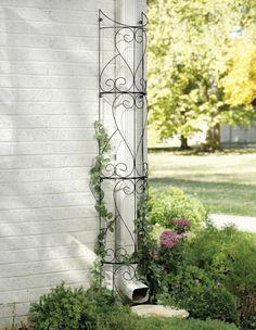 columnas verdes- trucos de jardinería                                                                                                                                                      Más