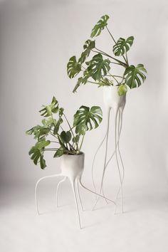 Beetje creepy maar wel prachtig: de plantenpotten van www.timvandeweerd.nl