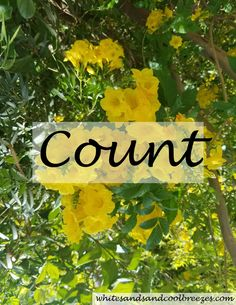 When was the last time you counted your blessings? Need help getting started? It's not as hard as you think to count them!! Free Printable. #count #inspiration #countyourblessings