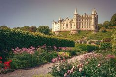 Dunrobin Castle, ScotlandThe historic home of the Earls and Dukes of Sutherland, which also served as a naval hospital during World War I and a boys' boarding school in the '60s and '70, is currently open to visitors from April 1 to Oct. 31 each year. Modeled after a traditional French chateau, the breathtaking castle boasts 189 rooms, expansive gardens and falconry displays. Medieval Fortress, Medieval Castle, Beautiful Castles, World's Most Beautiful, Himeji Castle, Cairngorms, Neuschwanstein Castle, Scotland Castles, Castle House