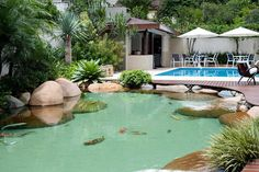 Lago com Acabamento Premium Ponds Backyard, Garden Pool, Water Garden, Backyard Landscaping, Swimming Pools, Florida Pool, Natural Swimming Ponds, Goldfish Pond, Backyard Waterfalls