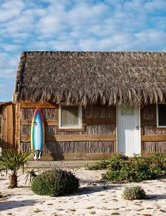 love this little surf shack