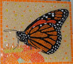best monarch butterfly
