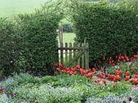 Vaše zahrada bude vždy jedinečná. Je zbytečné ji příliš omezovat jakýmkoli stylem. Ale na druhou stranu, zahradu lze ztvárnit tolika způsoby, že je někdy těžké si vybrat. Tipy na různé zahradní styly vám mohou napovědět, jaká tvář  je vašemu srdci nejblíže.