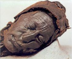 Highly acidic water, cold temperature and lack of oxygen are responsible for severely tanned, preserved bog bodies found in Sphagnum bogs in Ireland,Great Britain and Northern Europe. The earliest bog body is that of a Koelbjerg woman dating back to 3500BC!