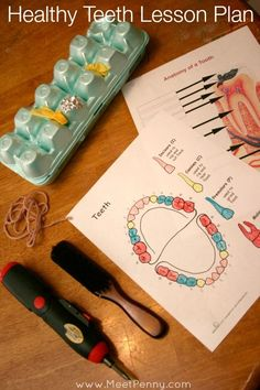 A fun but necessary lesson on dental health. Learning about teeth and tooth care. Links and printables too,