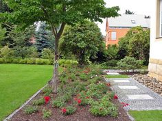 New Home Landscaping Ideas for Front Yard | House Decorating Ideas
