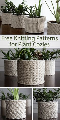 "Free Knitting Patterns for Plant Cozies - 5 different patterns for covers for plant containers. The patterns include: Lattice Cable, Jute, Herringbone, Garter Stitch, Stockinette. Designed by Brome Fields. The designs use from 60 - 140 yards (55 - 128 m) of worsted weight yarn and take from 3 to 10 hours to knit. Sizes: 4″ or 5"" diameter container depending on pattern. The designer even includes planting notes."