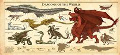 Resultado de imagen para natural history of dragons