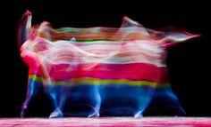 London, Großbritannien, von Leon Neal/AFP, publiziert am 4. März 2013    In der Londoner Southbank Centre's Queen Elizabeth Hall tanzt die junge britische Tänzerin Lauretta Summerscales während eines Fototermins vor dem Finale des Emerging Dancer 2013-Wettbewerbs.