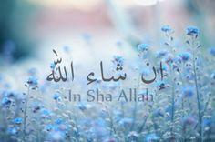 inshaAllah