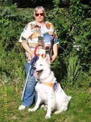 Bildergebnis für blinde menschen mit hunden Blinde, Husky, Dogs, Animals, People, Animales, Animaux, Pet Dogs, Doggies