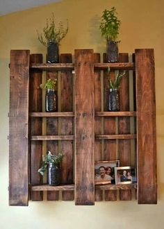 Wall decor. Use of pallet. Plants. Photos.