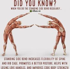 Nowadays, yoga classes have actually ended up being a necessity than ever. The practice is popping up in fitness centers, schools, and even some shops, not to discuss real yoga studios! Yoga Fitness, Fitness Facts, Fitness Motivation, Health Fitness, Fitness Life, Fitness Goals, Yoga Positionen, Yoga Meditation, Yoga Flow