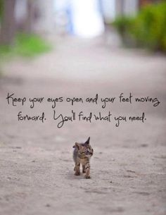 6 de novembro de 2014 Keep your eyes open and your feet moving forward. You'll find what you need. P A T C H W O R K *d a s* I D E I A S