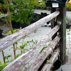 Cinderblocks (painted) and poles = instant fence/ Or trellis for veining plants and veggies LOVE it