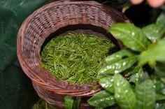 Black Tea Leaves, Matcha, Herbs, China, Chinese Culture, Health, Green, Japanese, Food
