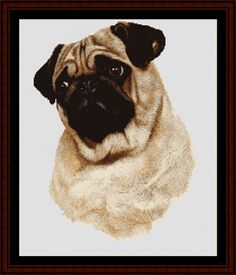 Pug - Cross Stitch Collectibles fine art counted cross stitch pattern