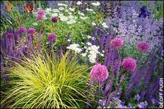 May 2006 - Tom Stuart-Smith's garden of sumptuous purple and blue naturalistic planting set against walls of avant-garde rusty steel won the best in show award for The Daily Telegraph at Chelsea Flower Show