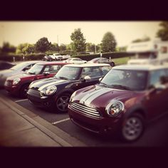 Minis at home  Mini coopers