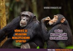 Diy And Crafts, Jokes, Humor, Funny People, Animals, Animales, Chistes, Humour, Animaux