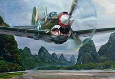 Curtiss P-40N