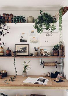 Hohes Regal mit Pflanzen?