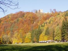 Stronghold Potstejn Czech Republic, Golf Courses, Vineyard, Vacation, Mountains, Nice, Places, Outdoor, Vacations
