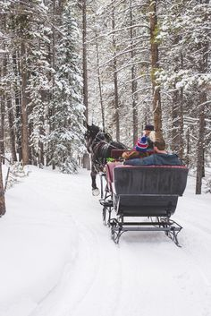 A horse-drawn sleigh in the middle of the Colorado mountains set the  backdrop for this winter proposal shoot.