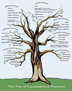 Tree of Contemplative Practices from the Trauma-Informed Practices and Expressive Arts Therapy Institute and Learning Center