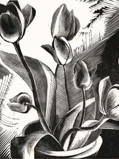 Gertrude Hermes (British, 1901-1983). Tulips. 1926. (wood engraving)