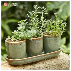 The long weekend is the perfect time to bring your garden to life. Shop the Garden Sale this weekend to save on planters. Country Farmhouse Decor, Living Room Kitchen, Long Weekend, Garden Projects, Flower Pots, Outdoor Gardens, Planter Pots, Backyard, Indoor