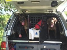 Fortunately our fire #dogs have their own special van! But please don't leave your dogs unattended during weather like this.