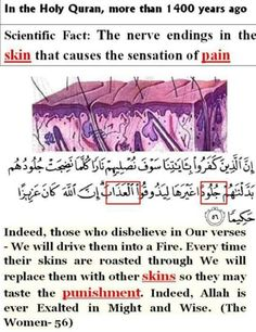 Miracles of the Holy Quran. Islam And Science, What Is Science, Science Facts, Islam Beliefs, Islam Religion, Islam Quran, Quran Verses, Quran Quotes, Islamic Quotes