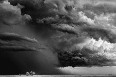 """""""Bäume, Wolken"""" in Texline, Texas: Die Wolken auf den Fotos wirken watteweich..."""