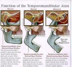 Funcion de la #ATM Articulación Temporomandibular