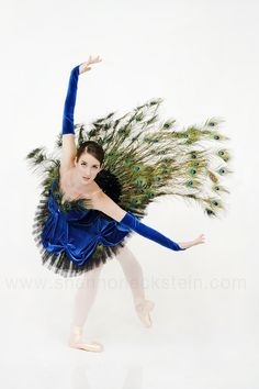 Peacock tutu, Hamilton Theatrical Costumes,  2012 Collection by Shannon Eckstein, via Behance.