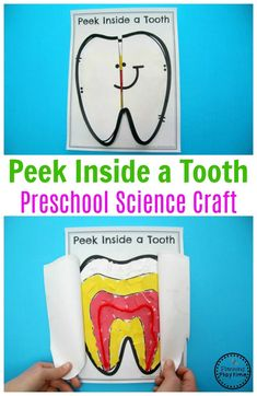 Preschool Tooth Craft - Inside of a Tooth Science. #dentalhealth #preschool #preschoolworksheets #preschoolcenters