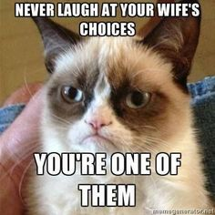 Grumpy cat, grumpy cat meme, grumpy cat humor …For the best humour and hilarious jokes visit www.bestfunnyjokes4u.com