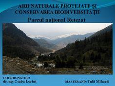 Nature, Travel, Park, Naturaleza, Viajes, Destinations, Traveling, Trips, Nature Illustration